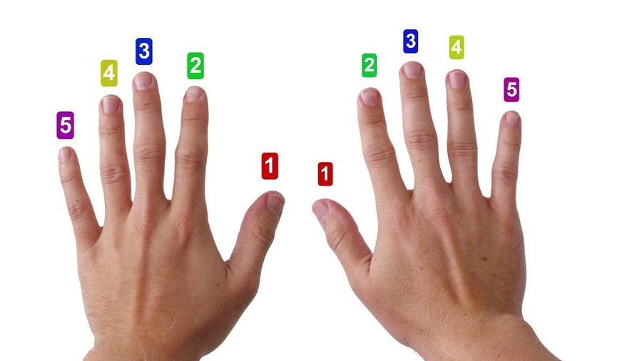 Nummerierung der Finger für einen passenden Fingersatz beim Klavier lernen
